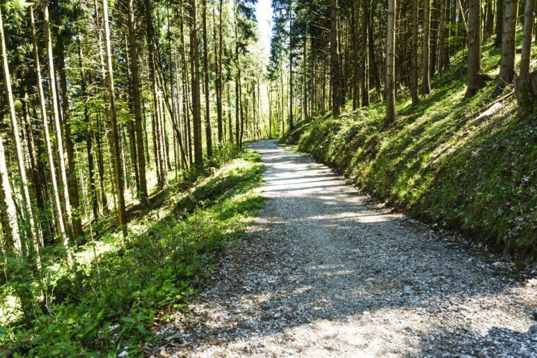 Abstieg nach Grassau