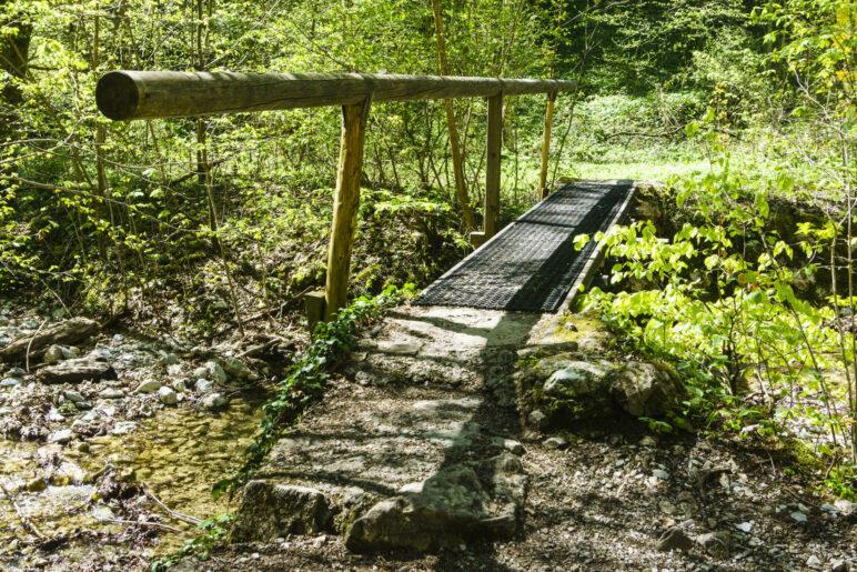 Eine kurze, schmale Brücke im Wald