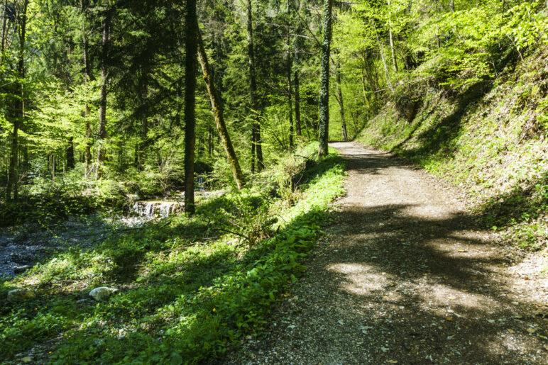 Am Bach entlang führt der Weg leicht bergauf