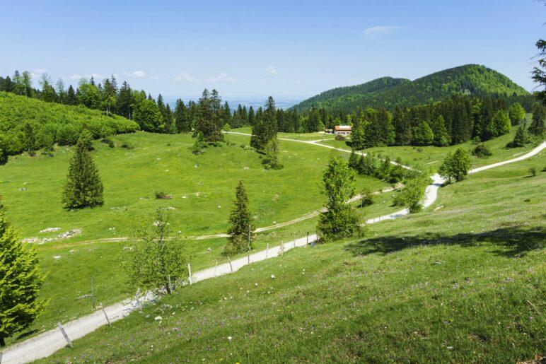 Ein Blick über die Almwiesen zur Frasdorfer Hütte hinüber