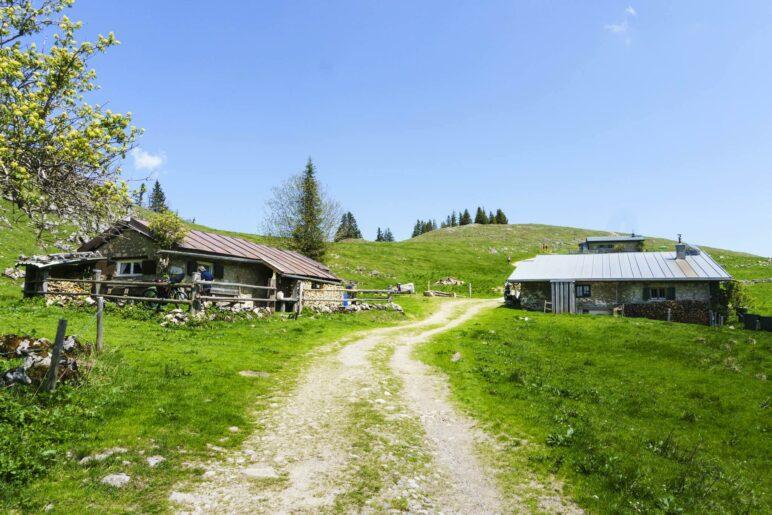 Hinter den Gebäuden der Laubenstein-Alm liegt der breite Grasgipfel