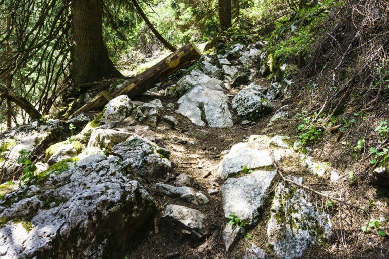 Auf dem schönen, felsigen Bergpfad wandern wir zur Riesenhütte