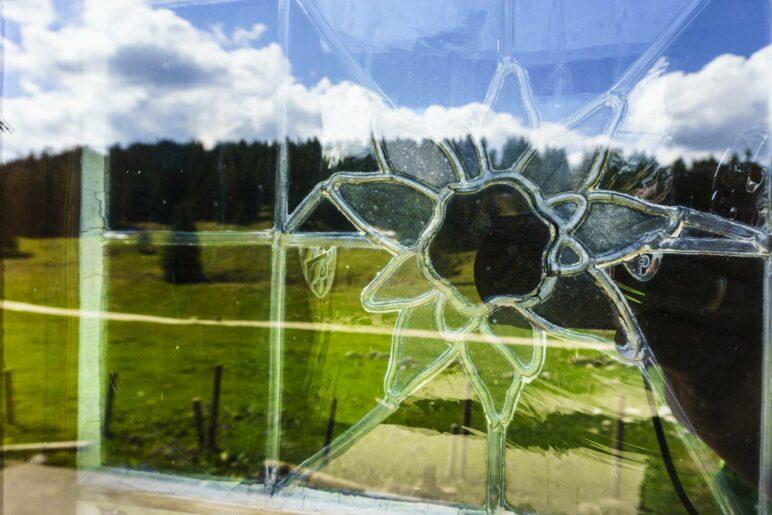 Edelweiß in einem Fenster der Riesenhütte
