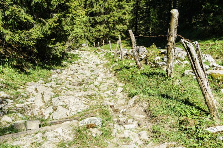 Ein sehr steiniger Weg als Härtetest für müde Wanderer