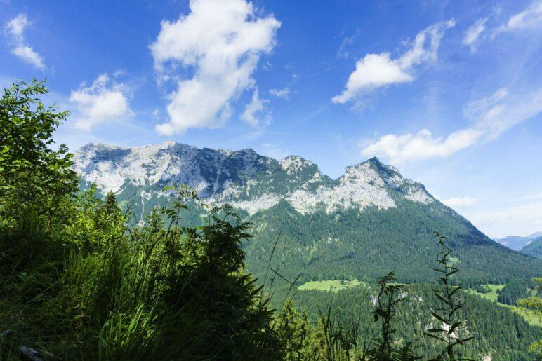 Ein kurzer Blick aus dem Wald auf die Reiteralpe