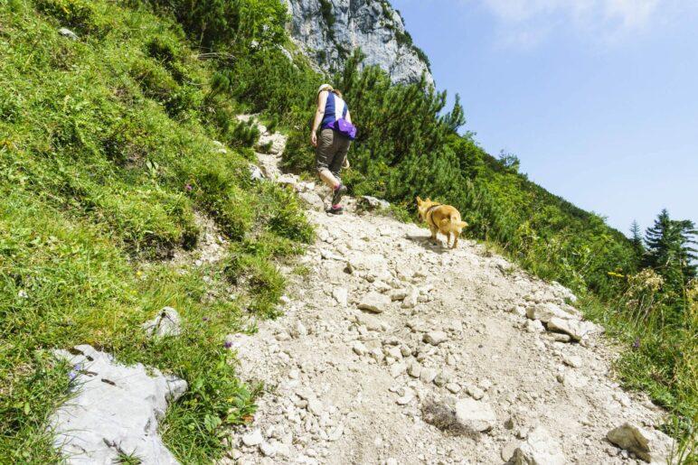 An manchen Stellen führt der Schotterweg steil bergan